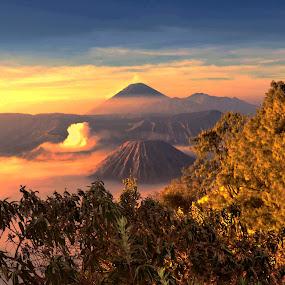 sunshine morning by Dedi Sukardi - Landscapes Mountains & Hills ( mount, east java, sunshine, morning, bromo )