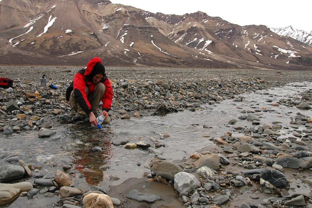 Getting water from a stream in Denali