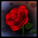 3D Rose Bouquet Live Wallpaper icon