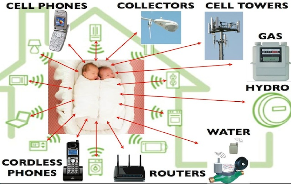 Microwave Radiation: Why Should Consumers Be Concerned?