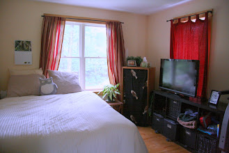 Photo: Den/guest room (down)