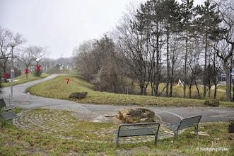 Photo: Blick über das Leuze-Freigelände Richtung Schwanentunnel B14. Der Bereich links und rechts des Weges soll gerodet werden