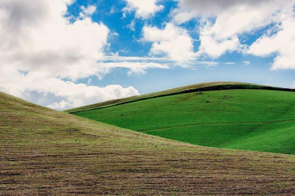 Verde siciliano  di acastiglione