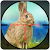 Rabbit Shooting - WildCraft Animal Hit Hunting file APK Free for PC, smart TV Download