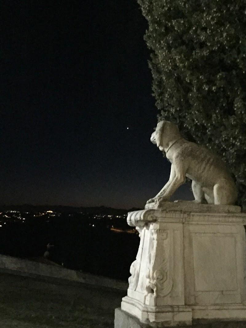A guardia delle stelle di  Antonella Giuliani