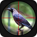 Forest Crow Hunting - 3D icon