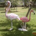 Flamingo Maketi Küçük