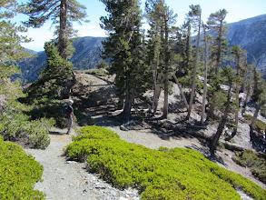 Photo: On North Backbone Trial descending Dawson Peak's south ridge