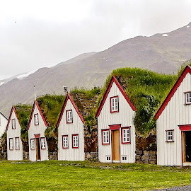 Sod Houses by Richard Michael Lingo - Buildings & Architecture Homes ( buildings, homes, sod, iceland, architecture )