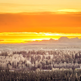 Sunrise over Fairbanks by Jordan  Richardson - Landscapes Sunsets & Sunrises ( mountains, winter, exlpore, cold, fairbanks, alaska, forest, travel, sunrise, landscape, sun )