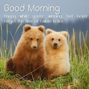 Morning Life Quotes Beauteous Good Morning Life Quotes  Android Apps On Google Play