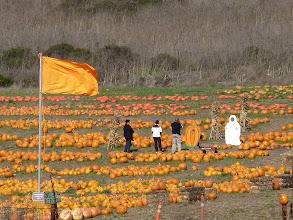 Photo: prêt pour Halloween