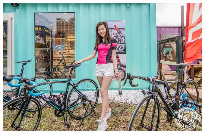 集盒DIZO自行車