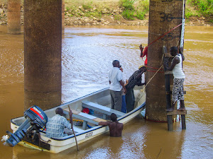 Transect on the Rufiji delta