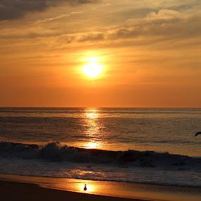by Missy Grove Horne - Landscapes Sunsets & Sunrises (  )