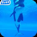 Orca Whale Video Live Wallpaper APK