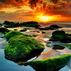not finish by KooKoo BreSyanatha - Landscapes Sunsets & Sunrises