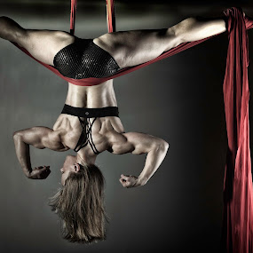 Balance Of Power 2012 Series #10 Suspense 2 by Monte Arnold - Sports & Fitness Other Sports ( suspend, silk, hang, strong, strength, color, back, body, aerial, portrait, building, colors, red, balance, muscle, lady, power, dance, landscape, women, object )