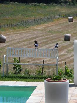 Agriturismo Podere Borgognano