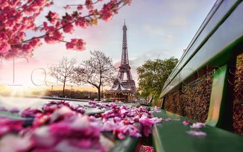 Francie Puzzle - náhled