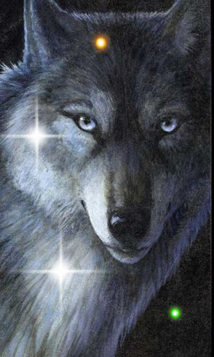 Wolves Sounds live wallpaper