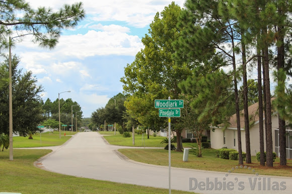 Street view on Florida Pines