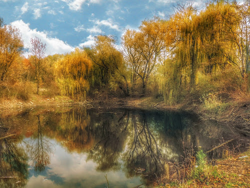 by Ksenija Bauer - Landscapes Waterscapes