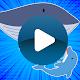 الحوت الأزرق (app)