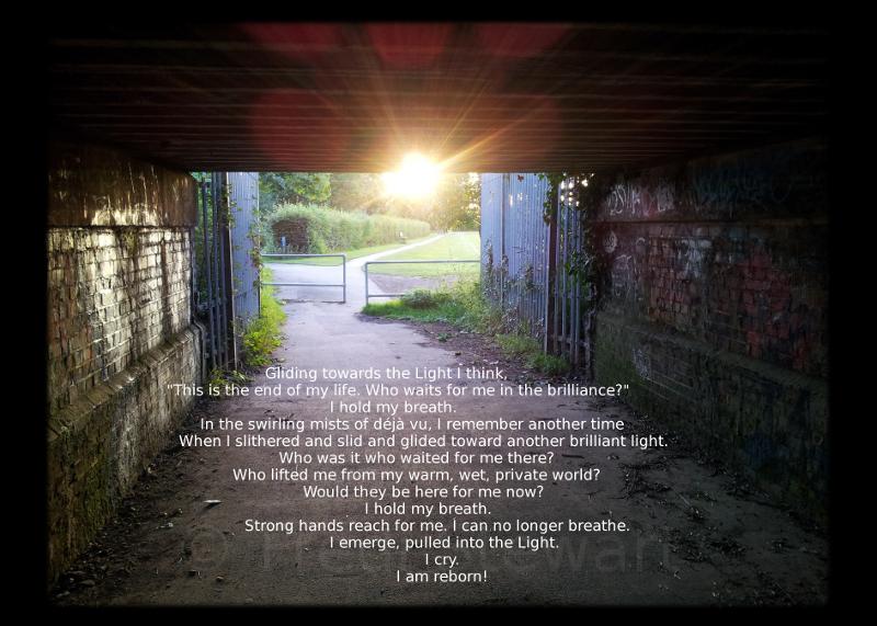 Photo: 'Reborn' - Fredi Stewart. More: http://bit.ly/Ukt1DN