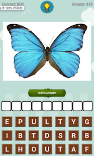 Insect Quiz - náhled