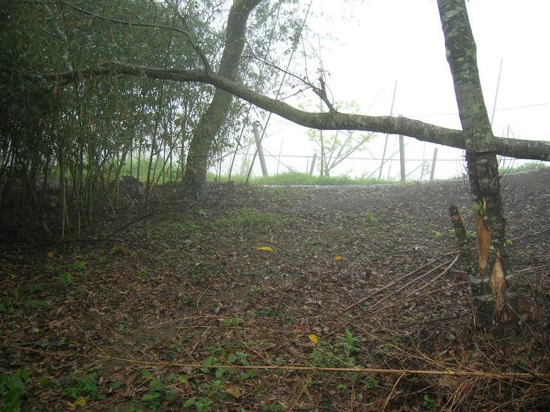 Photo: 燥坑,向五窯坑分水嶺看