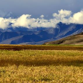 Beauty! by Abhishek Majumdar - Landscapes Mountains & Hills ( madhur, sarbajit, vikram, nitesh, prithvi )
