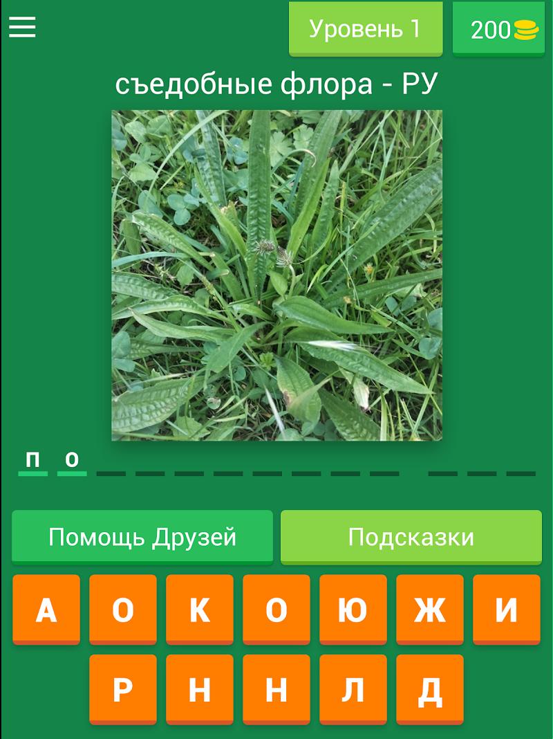 Скриншот Растения - русские