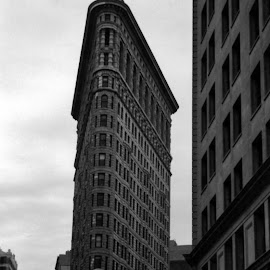 Flatiron Building by Sarah Harding - Novices Only Landscapes ( building, iconic, skyscraper, novices only, architecture,  )