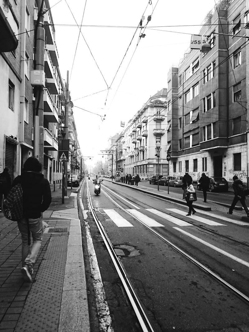 Milano, ore 7.30 di Francesca Zaia