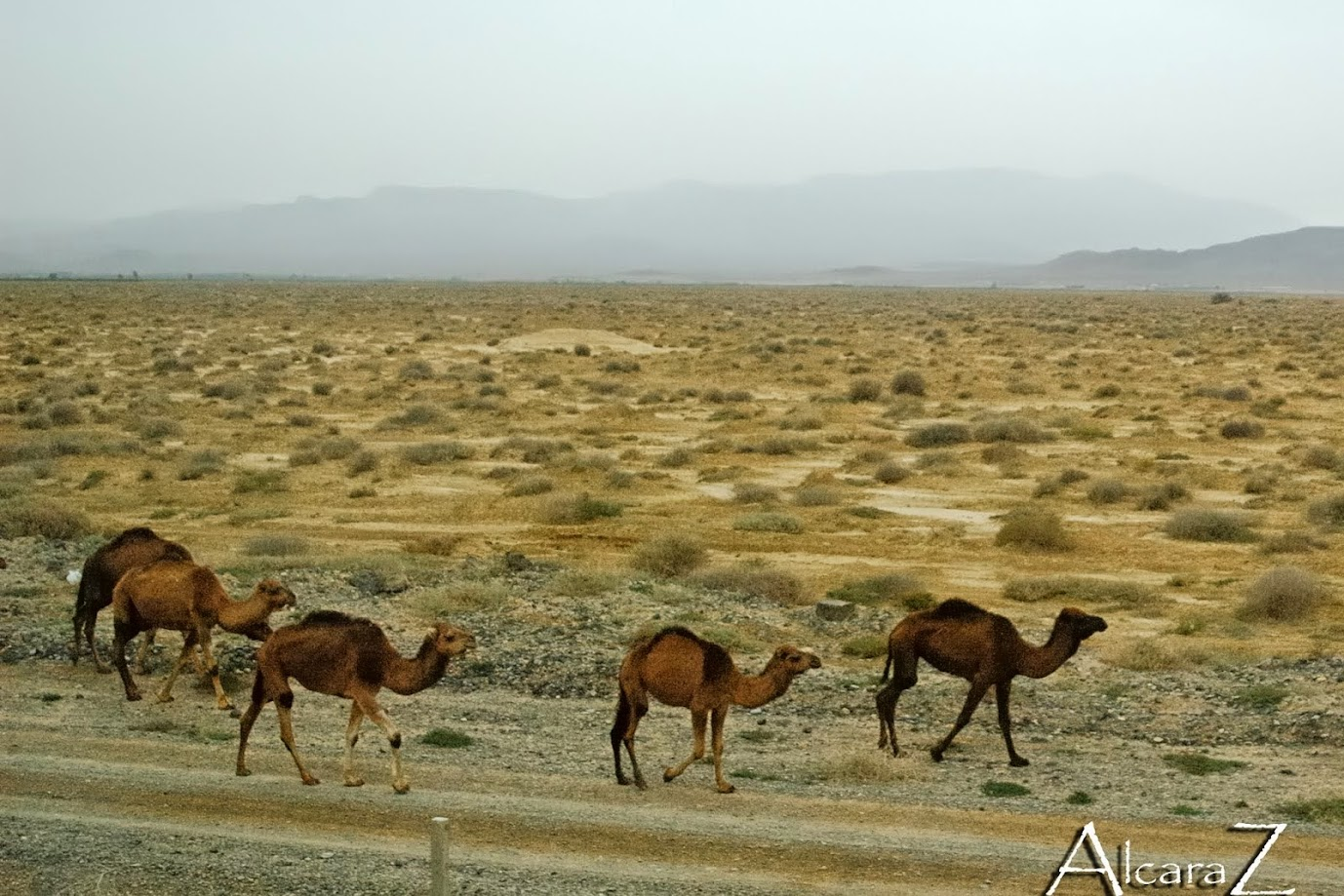 Viaje a Meknes