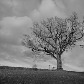 by Wiggo Løvik - Black & White Landscapes
