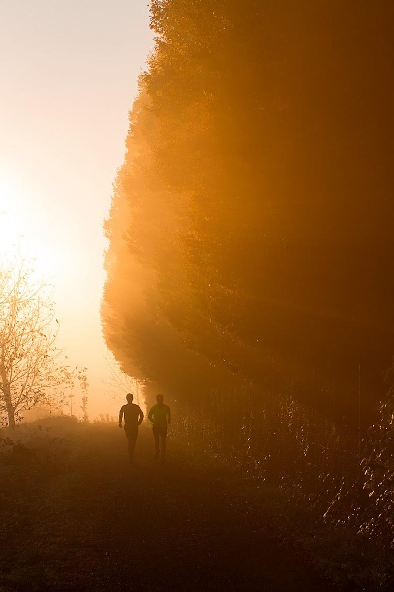 Alle prime luci dell'alba di wolfman1908