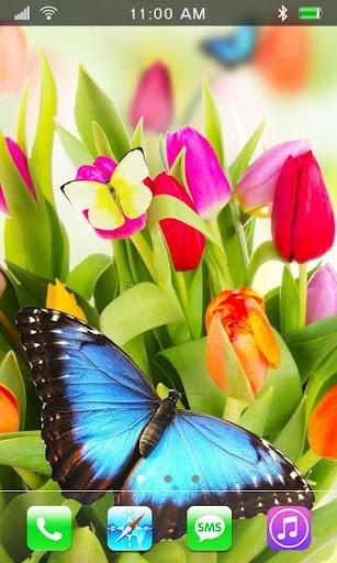 【免費個人化App】Beautiful Spring livewallpaper-APP點子