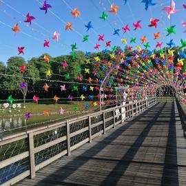 Colorful Passage by Steven De Siow - Buildings & Architecture Bridges & Suspended Structures ( outdoor, outdoor photography, bridge, colorful, park,  )