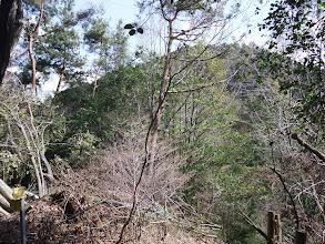 後ろに白山神社山頂