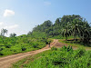 Eco Cycling Tours through Lush Green Krabi