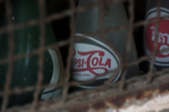 Photo: Year 2 Day 40 - Bottle  Seen Through the Grille in the Wall, Love the 1970s Logo