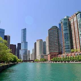 Chicago River by Christopher Kenney - City,  Street & Park  Skylines