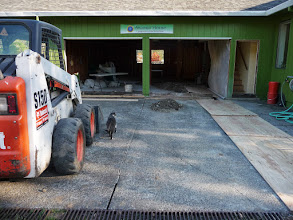 Photo: garage conversion: early days