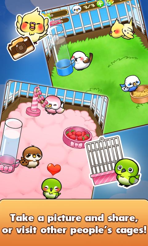 Bird Life Screenshot 4