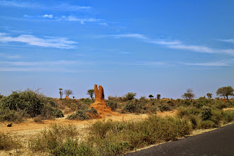 Photo: Ant hills in our way to Arba Minch