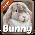 Bunny Theme icon