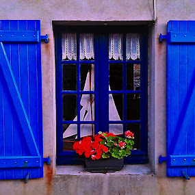 Window in Brittany by Dobrin Anca - Buildings & Architecture Architectural Detail ( window, street, funny, brittany, flower,  )