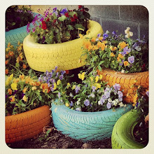 Photo: Tire flowers at Camp Hope, BC #intercer #camp #flower #flowers #yellow #green #orange #blue #tire #color #colors #pretty #beautiful #britishcolumbia #canada #hope #car #nice - via Instagram, http://instagram.com/p/cfBE_HpflB/